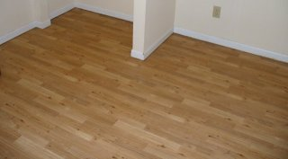 Vinyl flooring, not wood or laminate